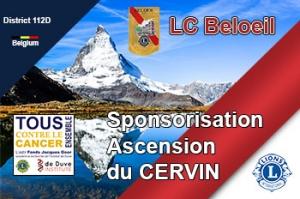 action_cervin 350